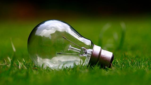 žárovka na trávě